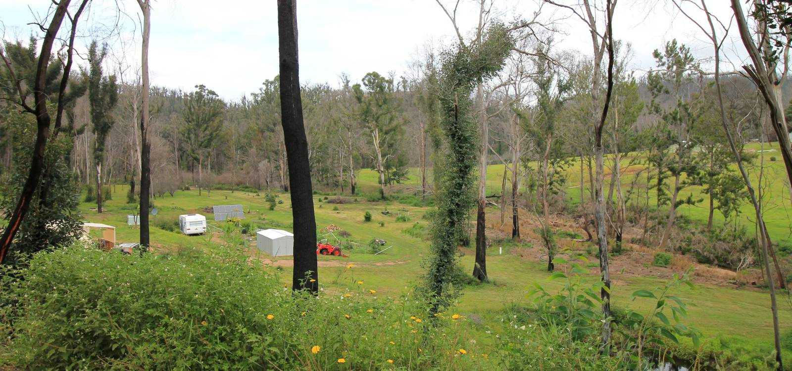 172 Reedy Creek Road EUROBODALLA, NSW 2545 - photo 1