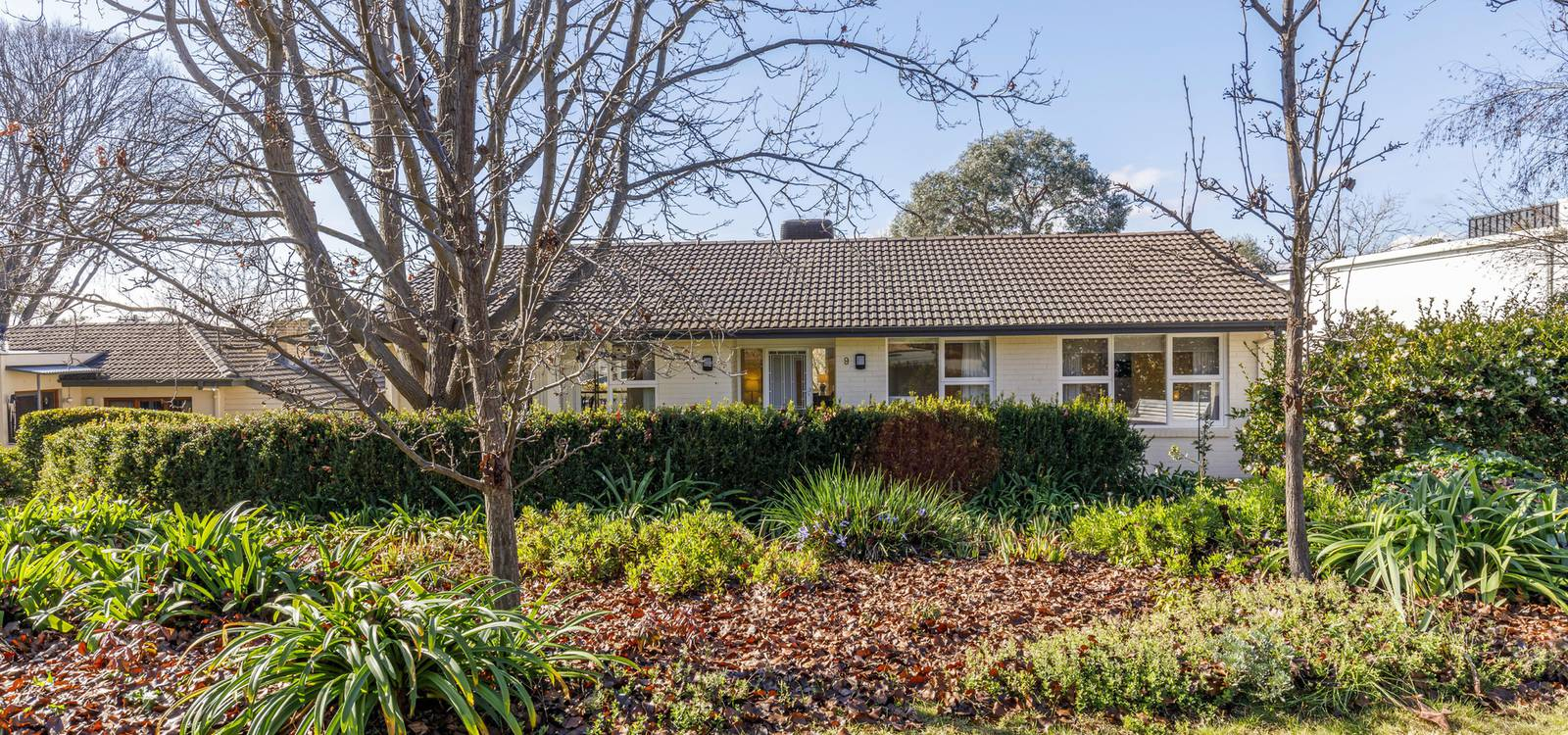 9 Reibey Place CURTIN, ACT 2605 - photo 1